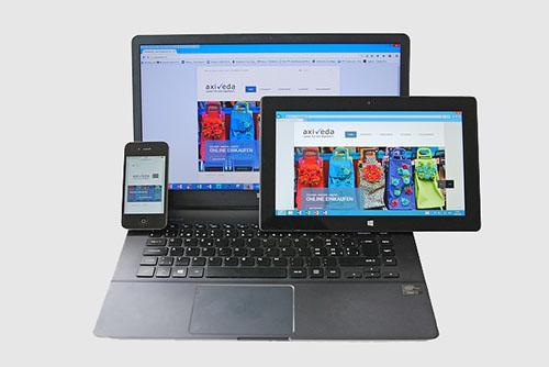 Website Modern Dengan Fitur Responsive Mobile